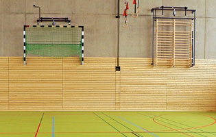 Basketball and gymnasium pe equipment for sale