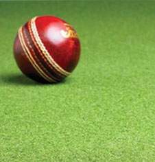Cricket Mats Arificial Cricket Pitch Matting For Outdoor Non Turf Cricket Pitch Installation Fitness Sports