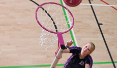 A single freestanding steel netball goal post.
