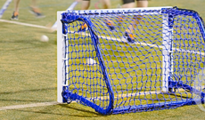 Folding hockey target training goal.