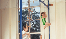 Gymnasium & PE wall mounted rope climbing trackways.