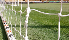 Senior 7.32m x 2.44m replacement goal netting.