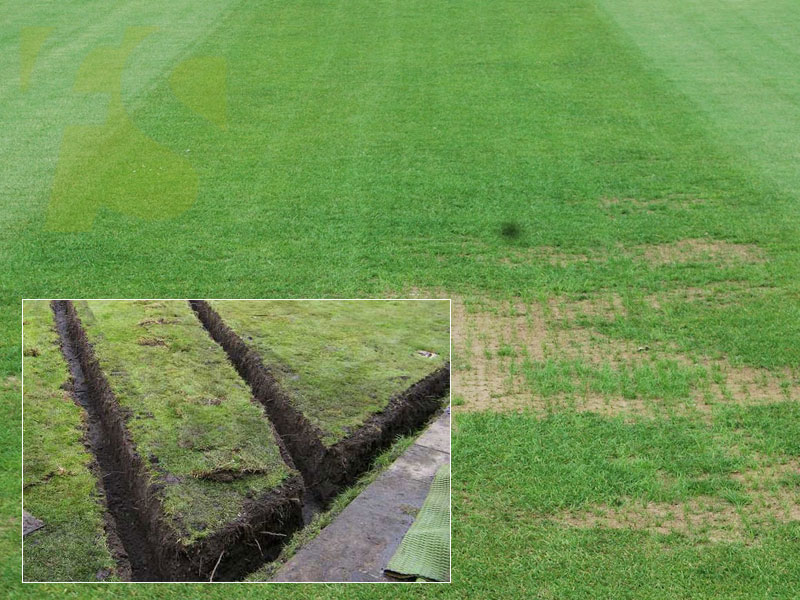 Cricket Pitch Drainage Water Control Fitness Sports